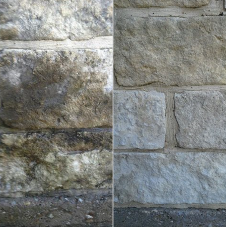 Beyond Aesthetics: Why Pressure Washing Matters for Health