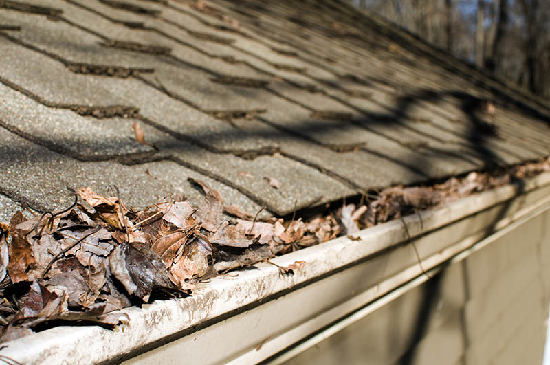 When to Clean Your Gutters?
