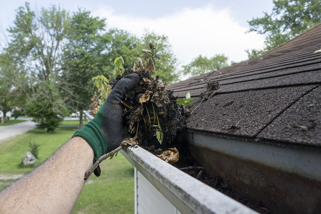 Gutter Cleaning as a Way to Increase Curb Appeal