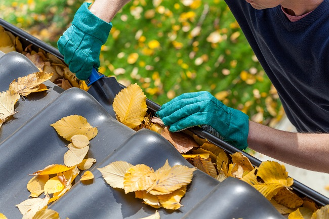 Unexpected Effects of Not Cleaning Your Gutters