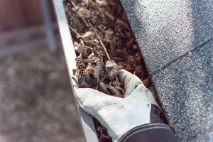 What Happens if You Don't Clean Out Your Gutters?