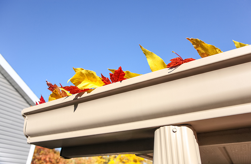 4 Reasons Your Home Needs Professional Gutter Cleaning